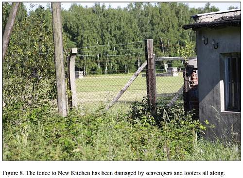 Looting of KL Stutthof by detectorists