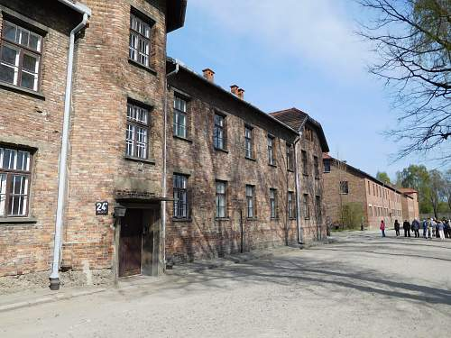 Concentration Camp Study Trip - Spring 2015