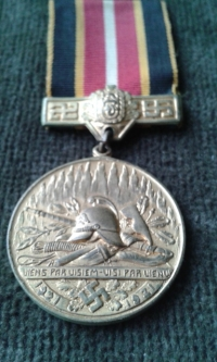 Latvian Fire fighters medal, Latvijas Ugunsdzeseju Savieniba