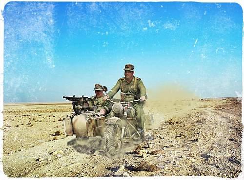 Reenactment USA - Tunisia 1943