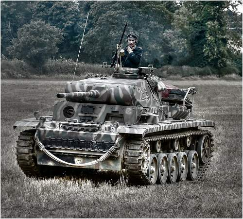 Click image for larger version.  Name:Tiger.jpg Views:68 Size:329.5 KB ID:613428