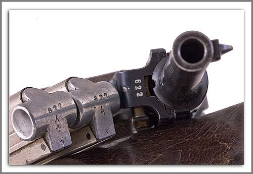 Click image for larger version.  Name:Mags---Pistol.jpg Views:95 Size:206.7 KB ID:584973