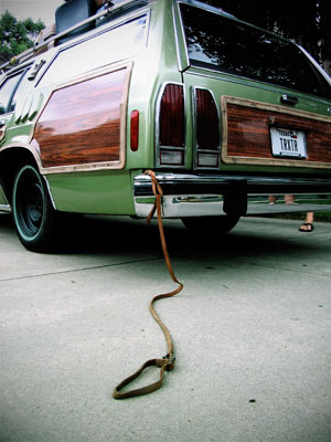 Name:  truckster_dog_leash.jpg