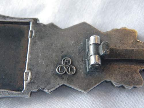 Silver Nahkampfspange FLL: Help on this one....Real or fake...?