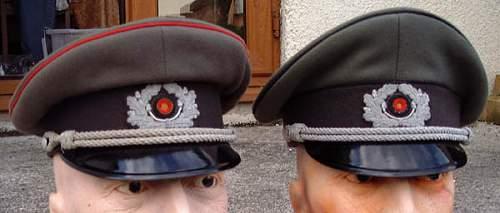 Grey visor cap Real or Fake?