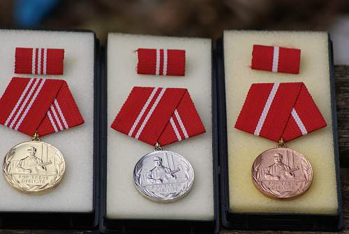 Kampfgruppe long service medals