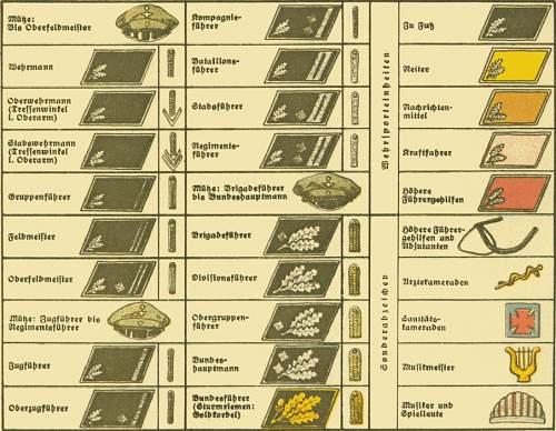 Click image for larger version.  Name:Uniformen, Abz., Fahnen, Standarten u. Wimpel der SS,SA und Stahlhelm_Page_27.jpg Views:44 Size:88.5 KB ID:1103474
