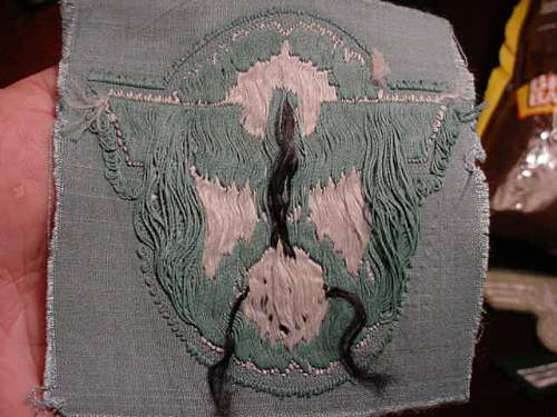 Fairly large police patch,sleeve eagle patch?