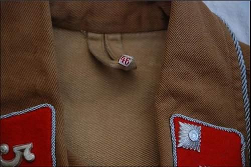Sa brownshirt -opinion