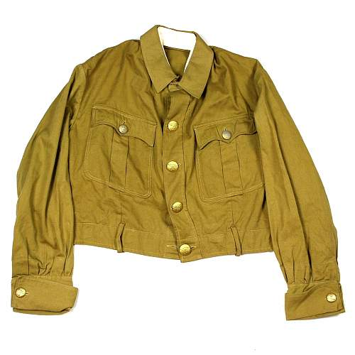 Nsdap brownshirt - original?