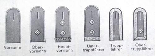 Reichsarbeitsdienst Untertruppführer schulterklappen
