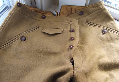 What do you think about this NSDAP Tunic and Breeches set?...