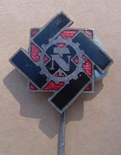 TeNo members pin