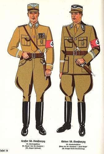 NSDAP shoulder board?