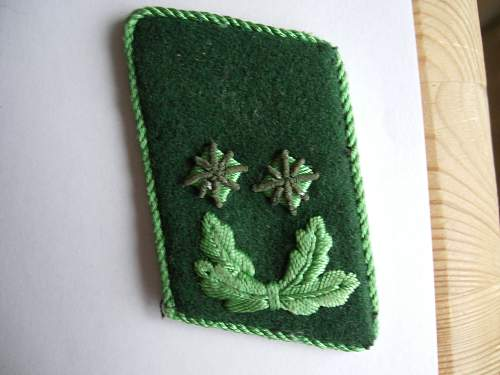 Collar tabs. What branch?