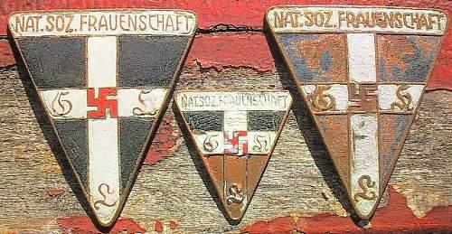 Click image for larger version.  Name:155) Frauenschaft - unfinished.jpg Views:54 Size:132.5 KB ID:314303