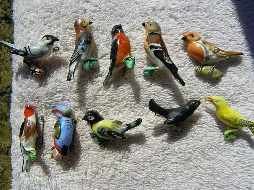 Click image for larger version.  Name:birds tinnie 001.jpg Views:101 Size:267.4 KB ID:336132