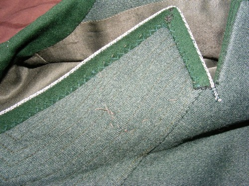 Third Reich State Forestry tunic- opinions sought please