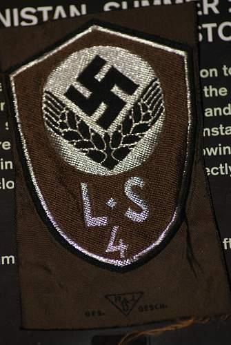 RAD sleeve insignia ?
