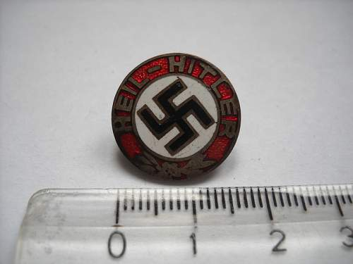 Heil Hitler badge, opinions