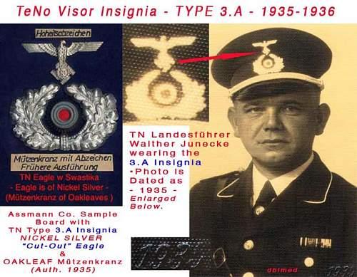 Click image for larger version.  Name:TN-Visor-Insig-3Aww.jpg Views:326 Size:112.6 KB ID:48197