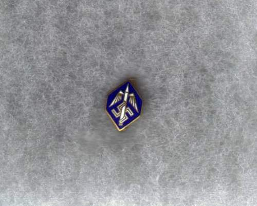 Please identify this Pin