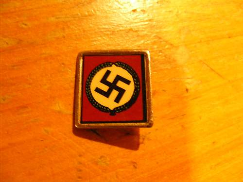 Nazi Pin??