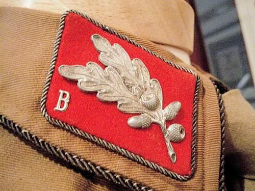 Click image for larger version.  Name:BERLIN BRANDENBURG OBERFUHRER BROWNSHIRT 002.jpg Views:190 Size:147.4 KB ID:575530