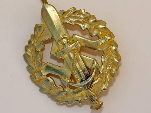 Naval SA Sports Badge??