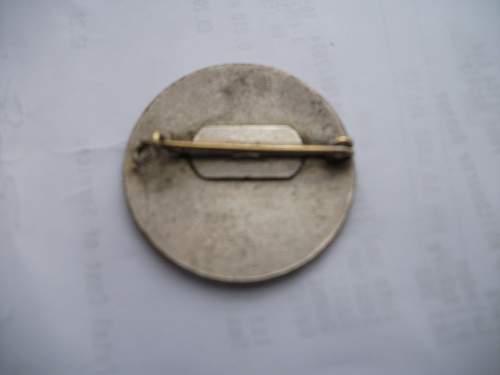 Rare STG enamel badge received today