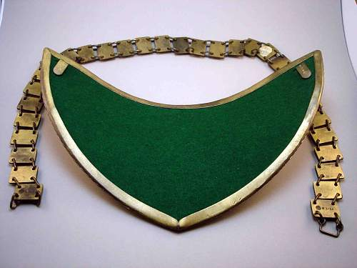 NSDAP Boxed Gorget