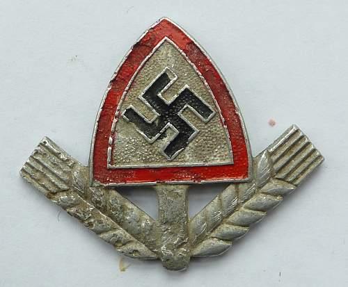 Battered RAD Badge.