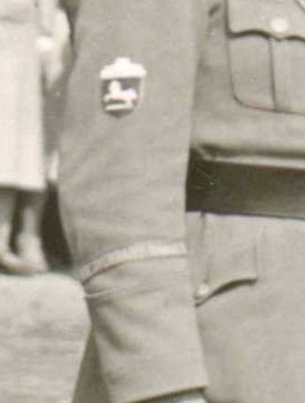 Cuff title and sleeve patch of a Stahlhelm/SA man