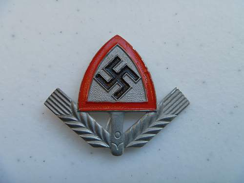 RAD cap badge for review