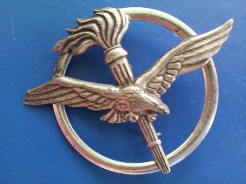 Nazi eagle and Olympic flame encircled
