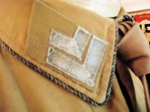 1st Pattern N S D A P Brownshirt