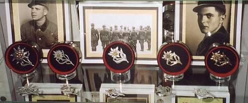RAD Cap Badge - Traditional? Gau?