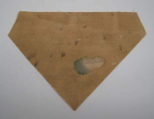 cloth NSFK insignia