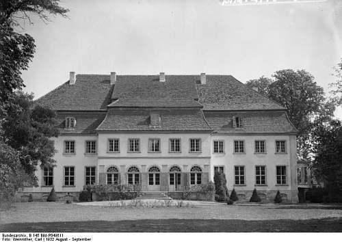 SA State Leadership School in Munich - Graduate Tyr Rune Insignia - RARE