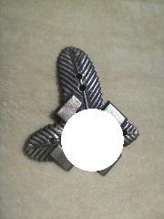 Early SA Cap Badge?