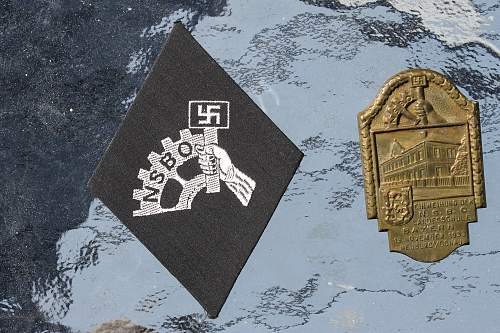 NSBO arm sleeve and day badge
