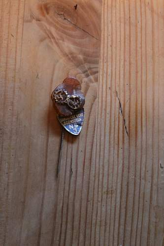 DAF/handworkers stickpin on amber with maker`s tag