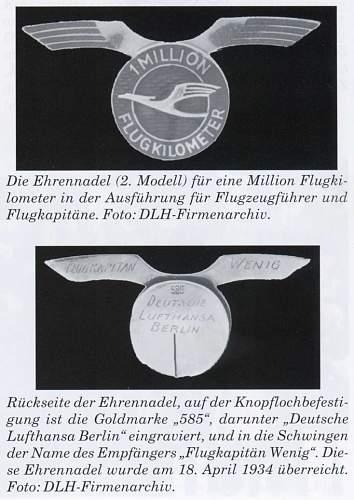 DLH Pilot's Wings