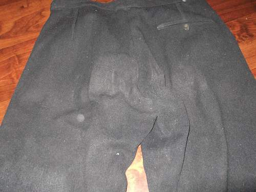 riding breeches   Dark blue  / black