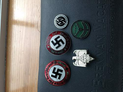 Badges pins any thought about them thank you