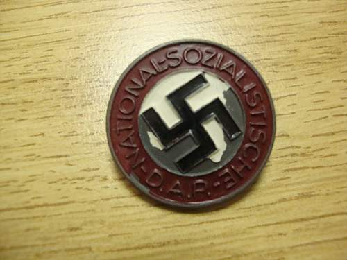 Painted NSDAP Pin Care