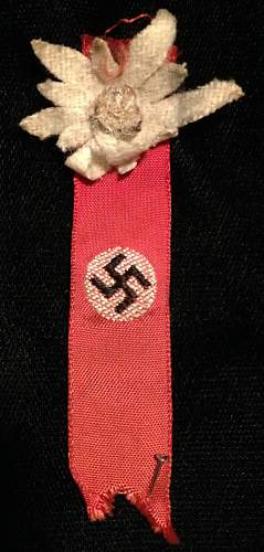 Party Flag Pin
