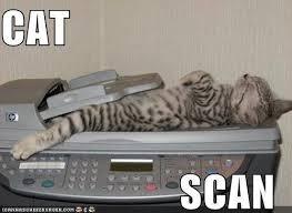 Name:  living cat scan.jpg Views: 92 Size:  7.8 KB