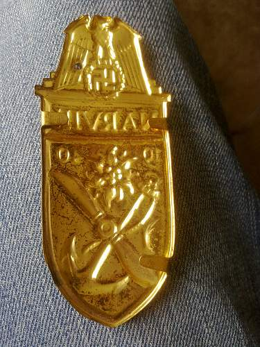 Opinion needed on this golden Narvik shield