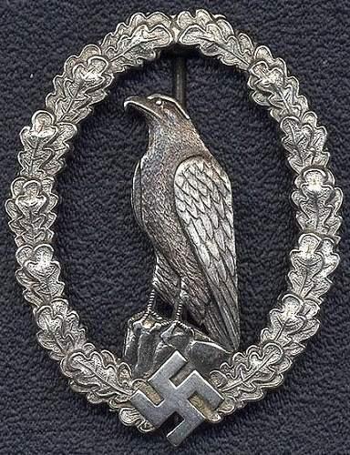 Retired Pilot Badge Fake Gallery: